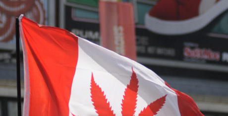 CANADA CONSIDERS NATIONWIDE MARIJUANA LEGALIZATION
